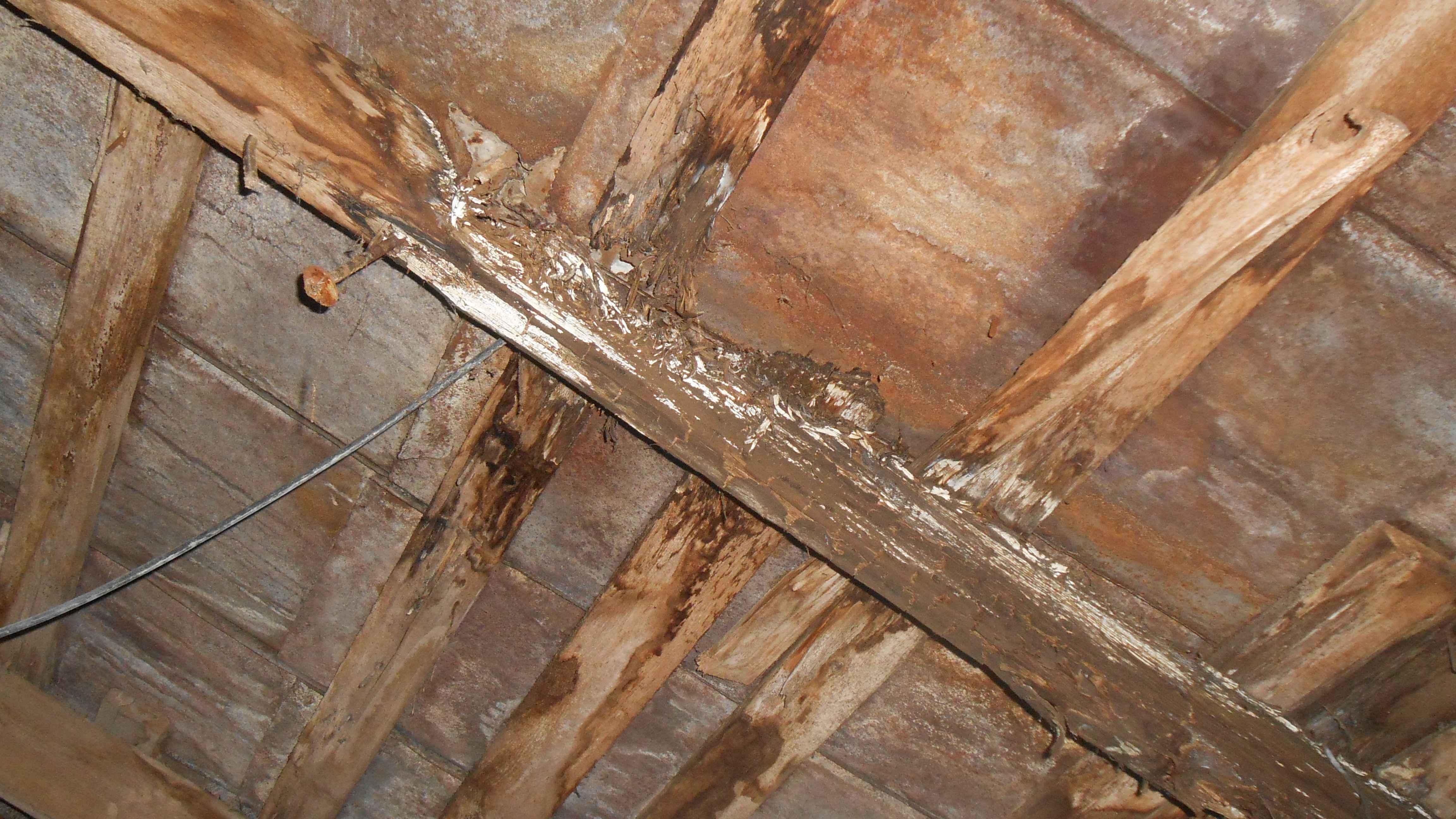 Как отремонтировать крышу деревянного дома